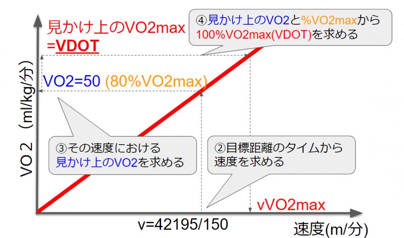 速度とVO2の関係